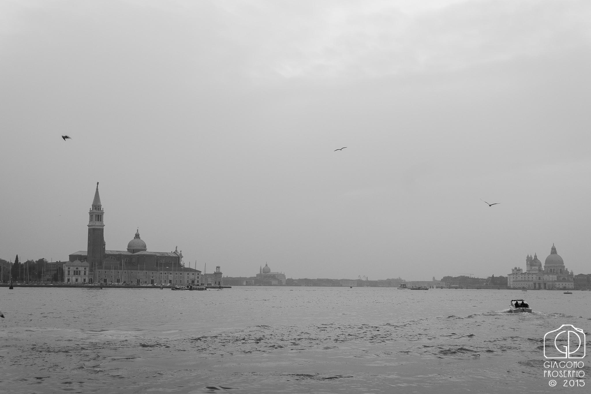 Venice's Laguna